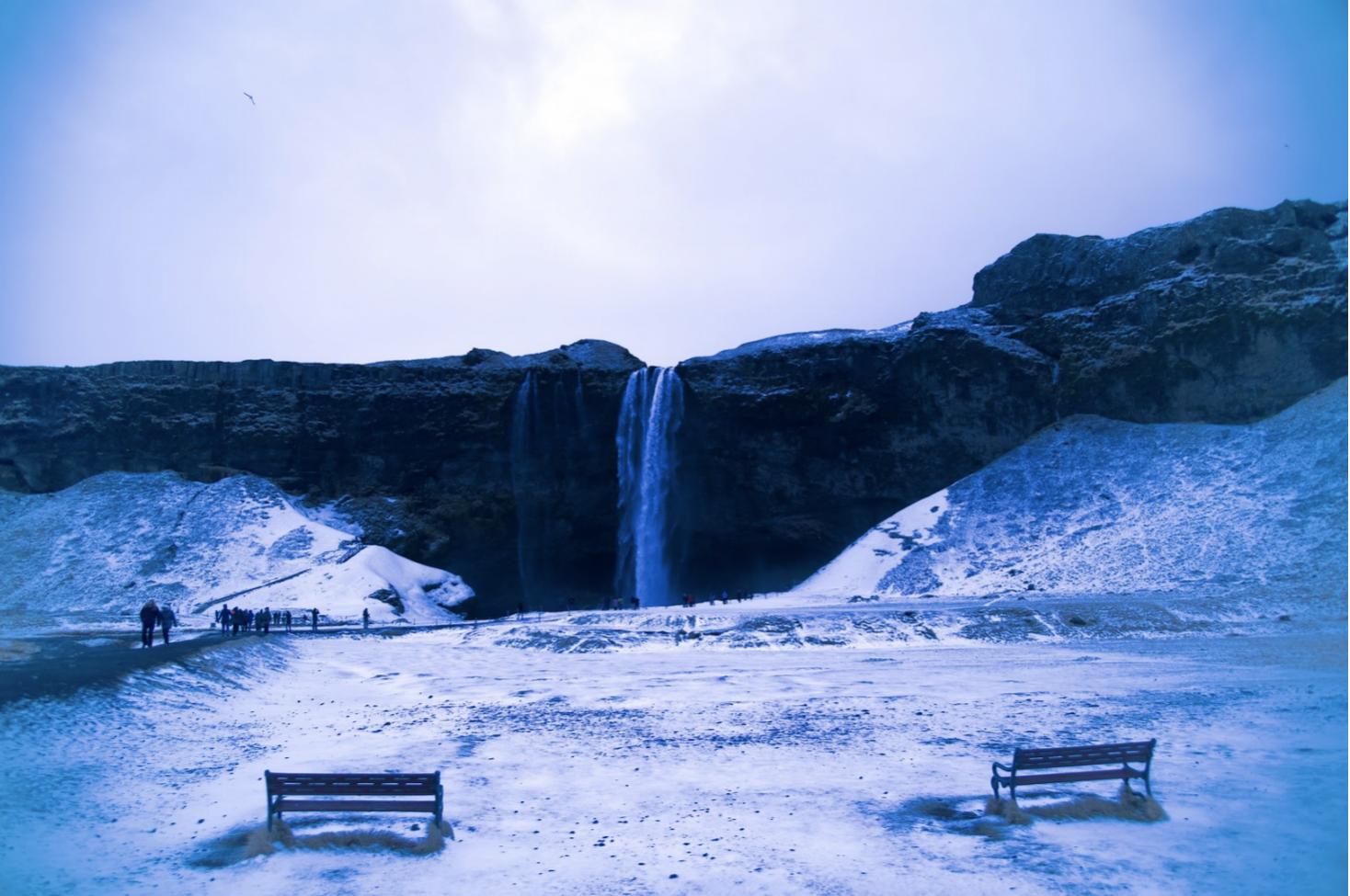 Winter Film Showcase