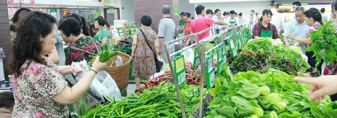 Vegetable Supplies in China
