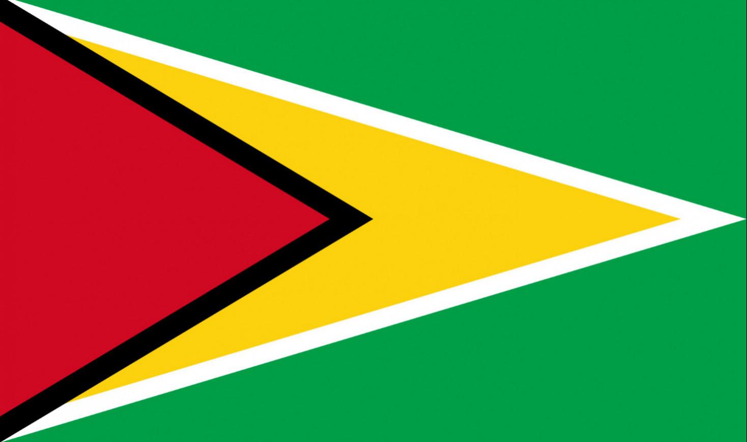Info Session: Guyana 2020